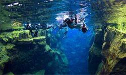 Snorkelen en duiken IJsland - Silfra excursie